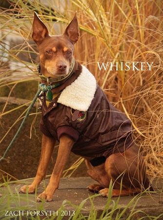 Whiskey 4
